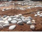 batu-ini-diduga-diambil-dari-galian-c-ilegal